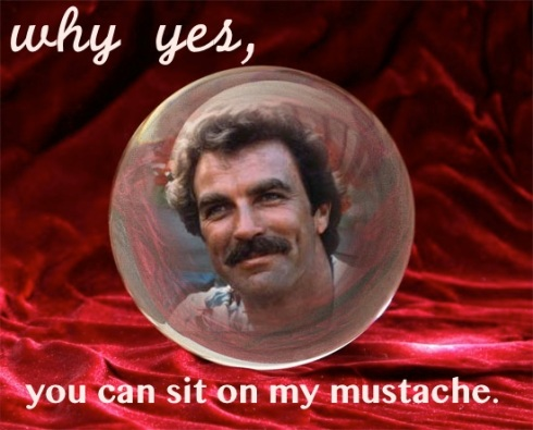 Tom Selleck why yes you can sit on my mustache