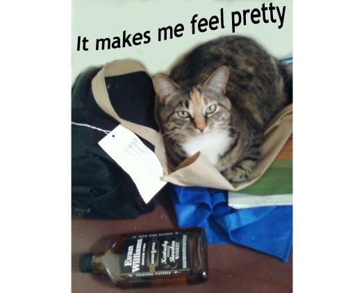 Whiskey Cat Meme Monday 4 winner Jacob Burnett for baseballfordinner.com