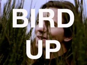 birdup